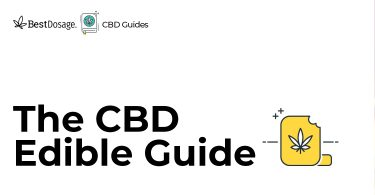 CBD Edible Guide for 2018-2019