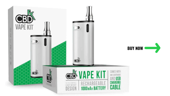 Best CBD Vape Pens of 2019: Disposable or Refillable? (The 2019 Guide)