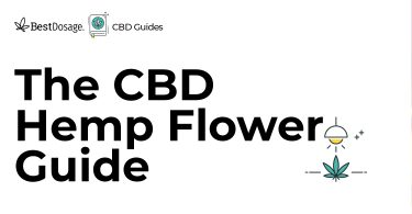 CBD Hemp Flower Guide