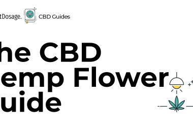 CBD Hemp Flower Guide