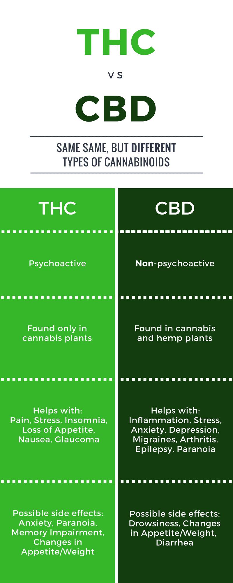 THC vs CBD: The ultimate guide