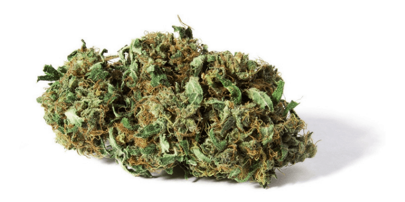 5 Best CBD Flowers To Buy Online (Updated September 2019)